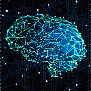 Neuroplasticity: Sentis